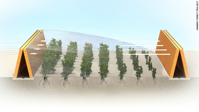 Greenification of Qatar Using Atmospheric Water | DRIPS Project